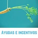Ayudas e incentivos para empresas